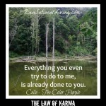 1 law of karma celie