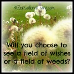 2 field of wishes