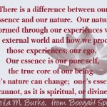 4 nature vs essence
